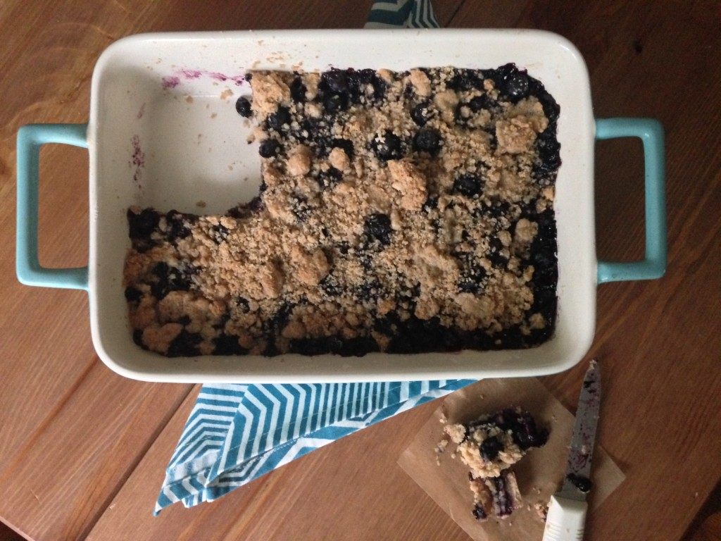 Blueberry Crumb Bar 1